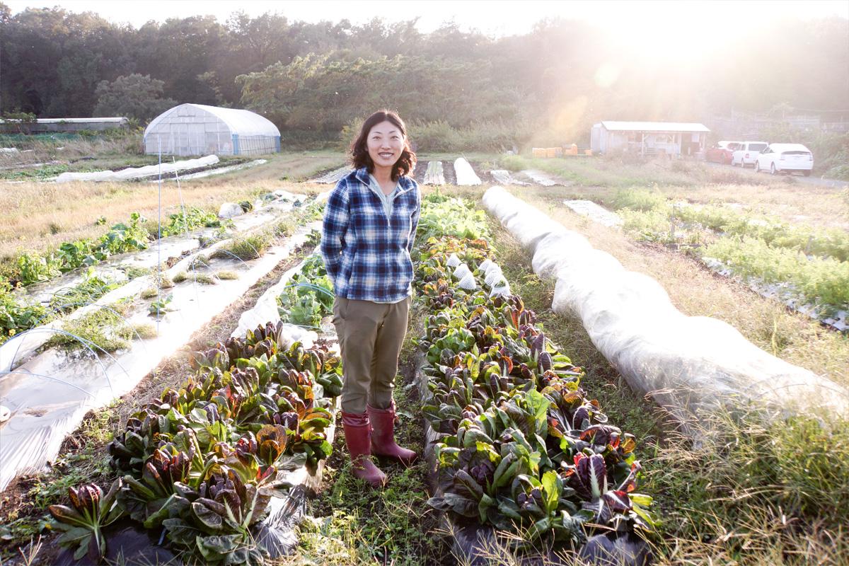関西では希少な黒ボク土の畑。前職のとき土で苦労したので、農地探しは土質にこだわった。