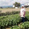 様々な野菜とお漬物加工等をされているベテラン女性農業者、「レイクスファーム」の辻清子さん。